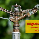 Irrigation Systems – Benefits of an Automatic Sprinkler System