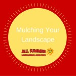 Mulching Your Landscape