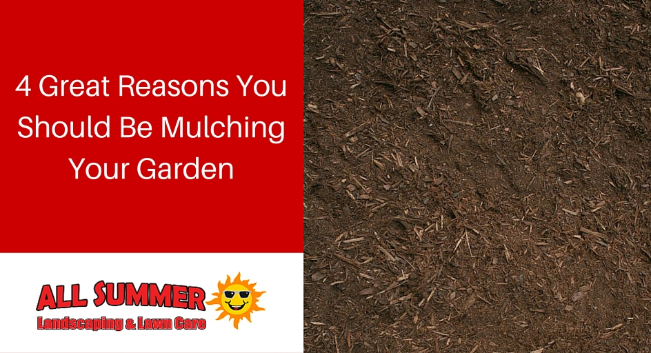 4 Great Reasons You Should Be Mulching Your Garden