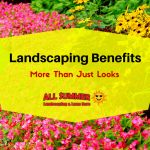 Landscaping Benefits – More Than Just Looks